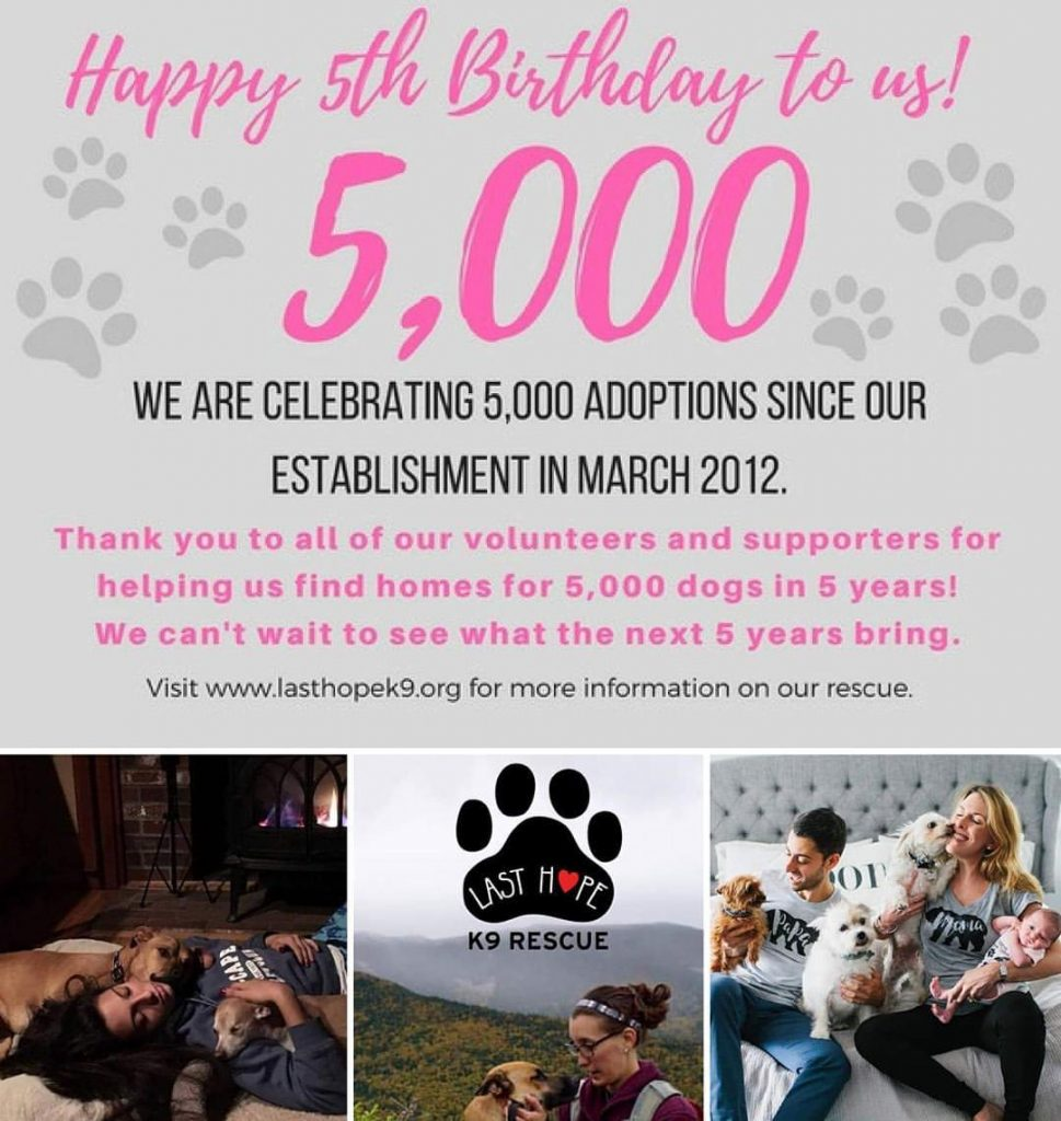 We've saved 5000! lives and it's our 5 year anniversary!