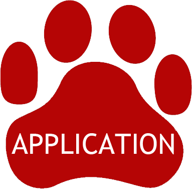 Foster Application