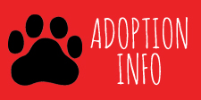 k9-adoption-info
