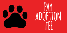Pay Adoption Fee