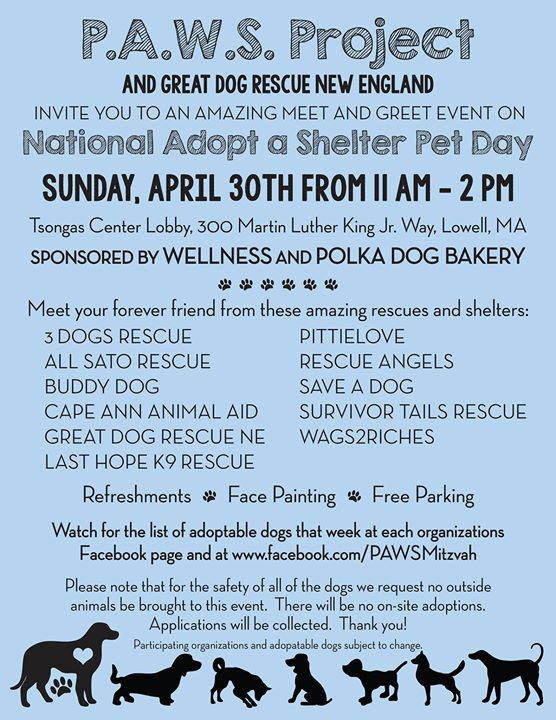 Paws project and lhk9 showcase event last hope k9 rescue please note applications need to be submitted on our website prior to the event if you wish to put a deposit on a dog stop by the multi rescue paws m4hsunfo