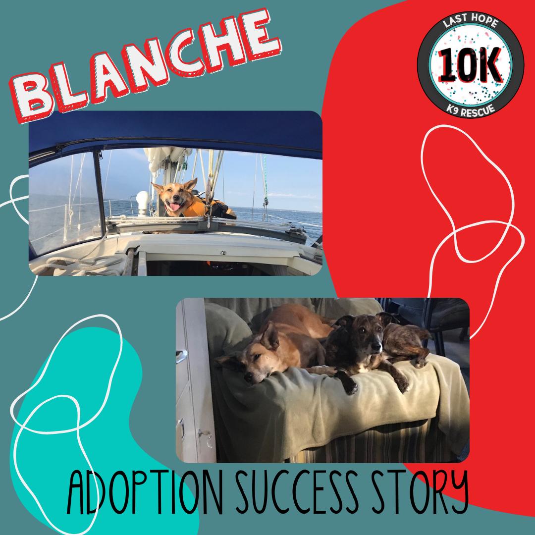Blanche Adoption Story