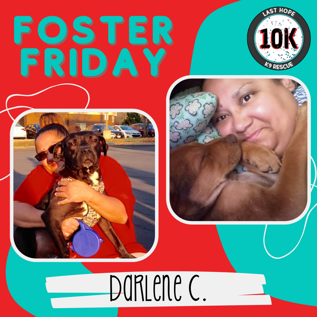 Foster Friday Darlene 1