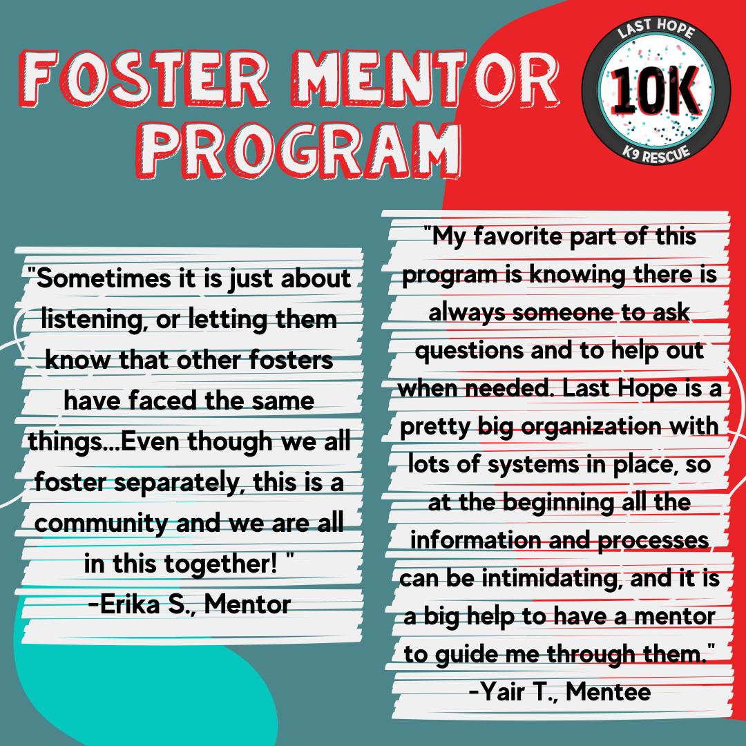 Foster Mentor 2