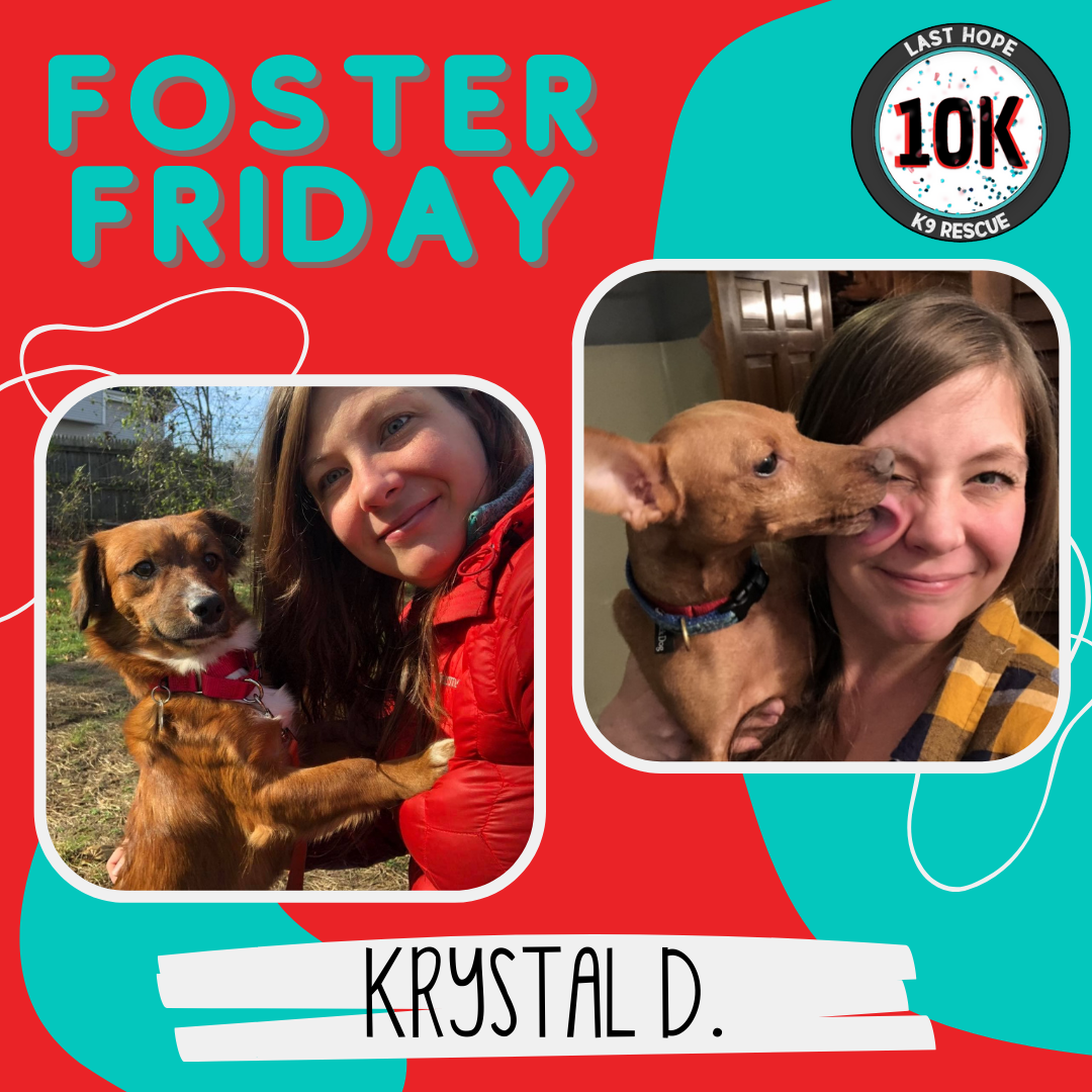 Foster Friday Krystal